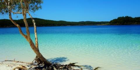 Oz – Hervey Bay & Fraser Island